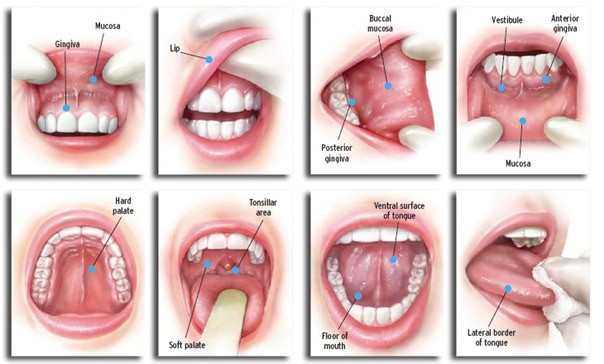 papillomavirus in mouth symptoms