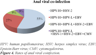 difference between hpv and herpes simplex virus