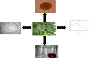 anthelmintic activity of silver nanoparticles)
