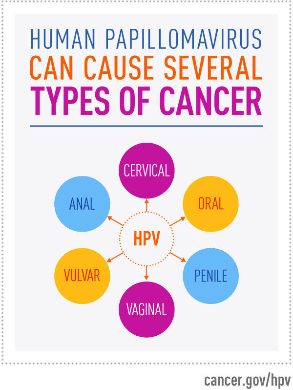 hpv cancer causes)