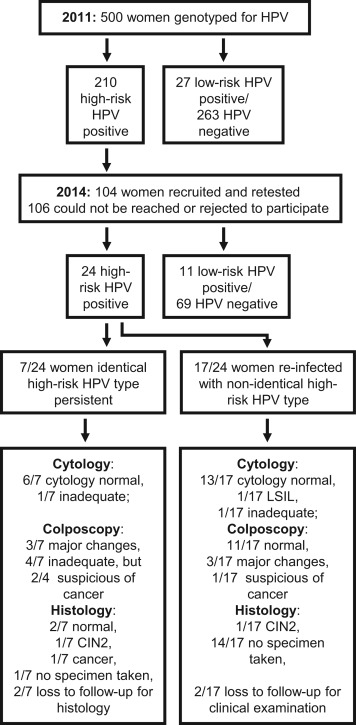 hpv high risk with genotype)