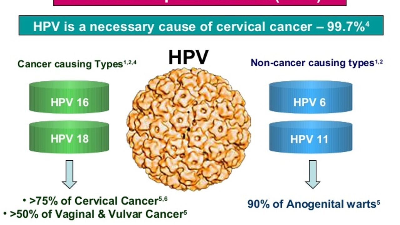 can hpv cause womb cancer)