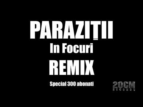 Parazitii - In Focuri/What's The Difference [REMIX] (special 400 abonati)